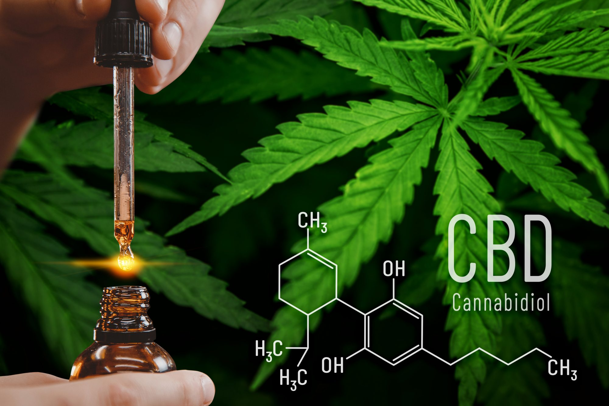 Well Being CBD Oil Reviews